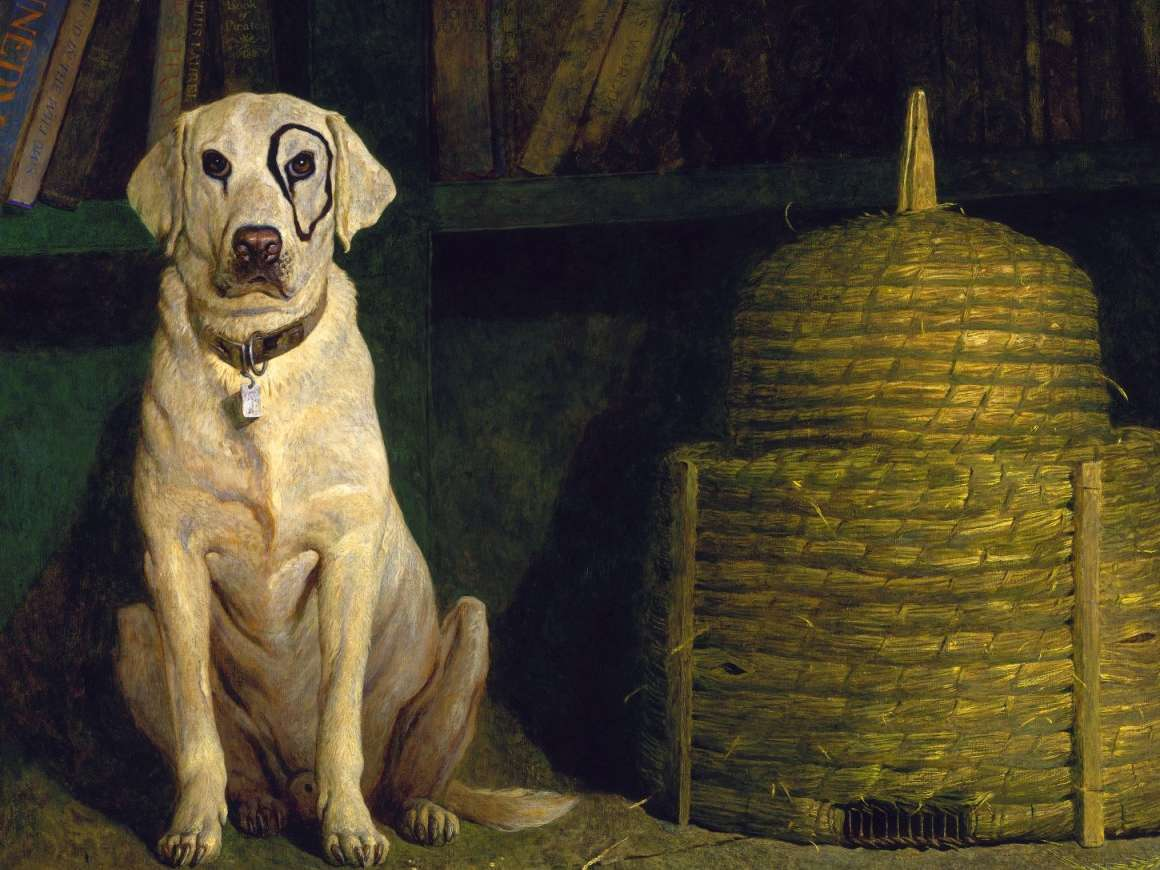 First Retrospective of Jamie Wyeth at Museum of Fine Arts, Boston