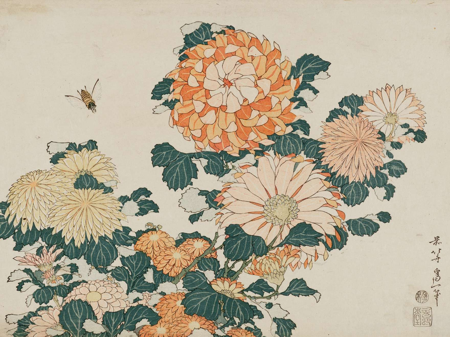 Katushika Hokusai, Chrysanthemums and Horsefly, from an untitled series known as Large Flowers, about 1833–34. Woodblock print (nishiki-e); ink and color on paper. William Sturgis Bigelow Collection.