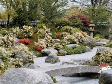 Japanese Garden 4