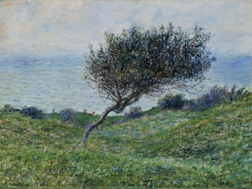 Seacoast at Trouville