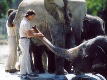 film still from zoo