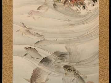 Fish Near Shore