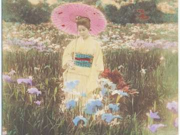 Woman with Parasol in an Iris Garden
