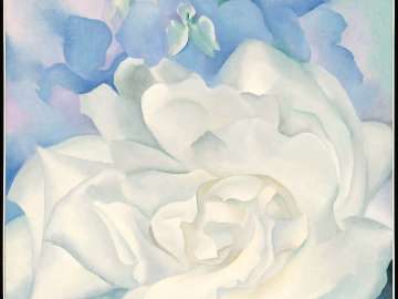 White Rose with Larkspur No. 2