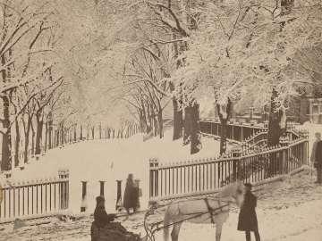 Snow Scene on the Northeast Corner of the Boston Common