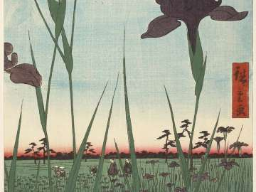 Horikiri Iris Garden (Horikiri no hanashôbu), from the series One Hundred Famous Views of Edo (Meisho Edo hyakkei)