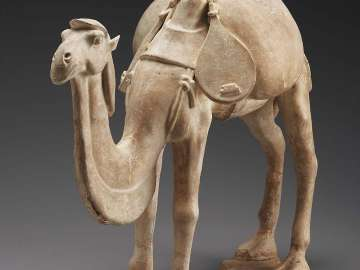 Camel with musical instrument-pipa