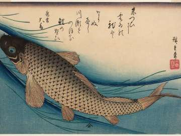 Carp, from an untitled series known as Large Fish