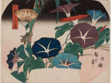 Morning Glories and Cricket, from the series A Compendium of Flowers of the Four Seasons (Shiki no hana zukushi)