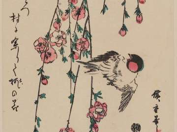 Bird and Peach Blossoms