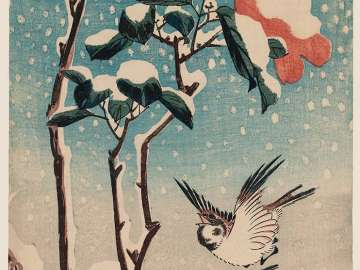 Sparrows and Camellia in Snow