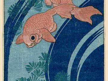Goldfish and Water Plants