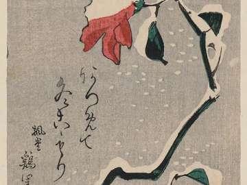 Camellia Blossoms in Snow