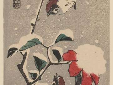 Camellia and Sparrows in Snow