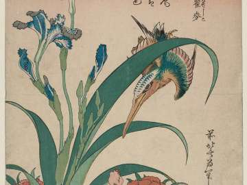 Kingfisher with Iris and Wild Pinks (Kawasemi, shaga, nadeshiko), from an untitled series known as Small Flowers