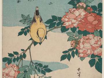 Warbler and Roses (Kôchô, bara), from an untitled series known as Small Flowers