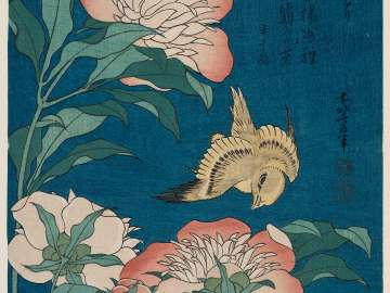 Peonies and Canary (Shakuyaku, kanaari), from an untitled series known as Small Flowers