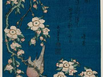Bullfinch and Weeping Cherry (Uso, shidarezakura), from an untitled series known as Small Flowers