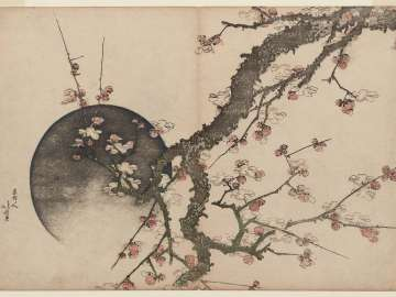 Plum Blossoms and Moon, from the album Fuji in Spring (Haru no Fuji)