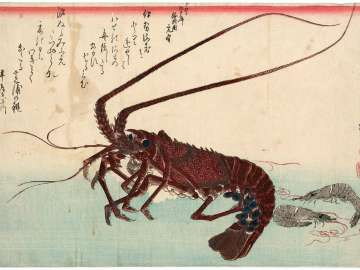 Lobster and Shrimp, from an untitled series known as Large Fish