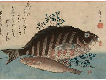 Striped Sea Bream, Rock-trout, and Nandina, from an untitled series known as Large Fish