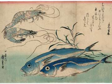 Horse Mackerel, Freshwater Prawns, and Seaweed, from an untitled series known as Large Fish
