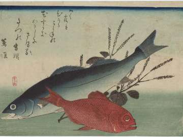 Sea Bass, Golden-eyed Sea Bream, and Shiso, from an untitled series known as Large Fish
