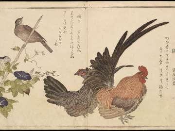 Momo chidori kyôka awase (Myriad Birds: A Kyôka Competition)