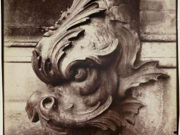 Gargoyle, Louvre Courtyard
