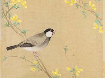 Java Sparrow and Yamabuki