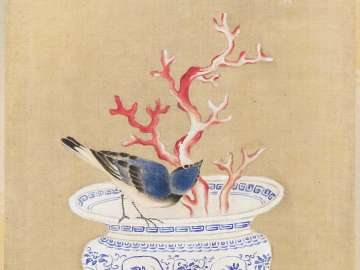 Siberian Blue Robin and Bowl