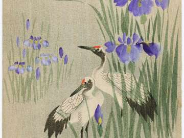 Two Cranes among Irises