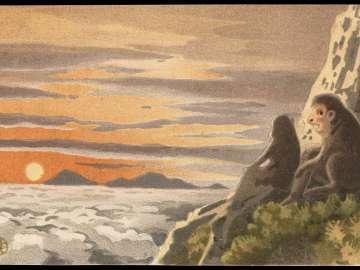 Monkeys and Sunset over Ocean