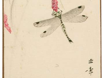 Dragonfly (Akitsu) from the series Sunbikai Cards by Gyokusho (Gyokusho sunga)