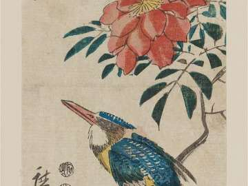 Kingfisher and Wild Rose