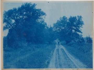 """""""Willow Road, AWD, Newbury"""""""
