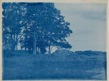Landscape with Trees and Pile of Hay