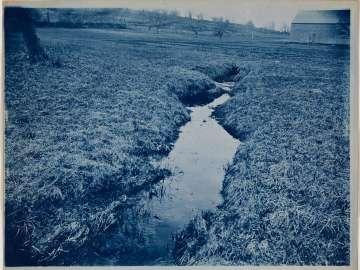 Stream in a Field