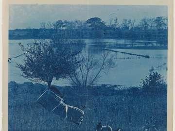 Water Landscape (breaks in negative)