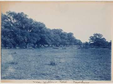 """""""Near Willow Road, Newbury"""""""