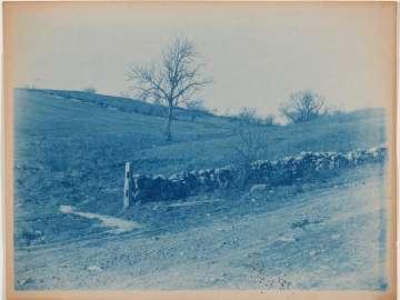 Stone Wall in a Field