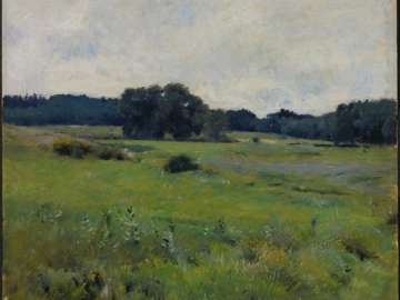 Meadow Lands