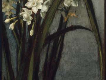 Narcissus on the Campagna
