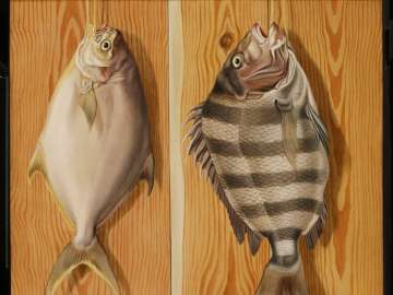 Dollarfish and Sheepshead