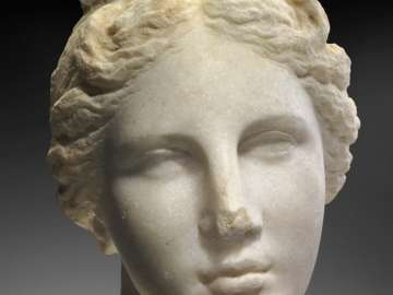 Head of Aphrodite (
