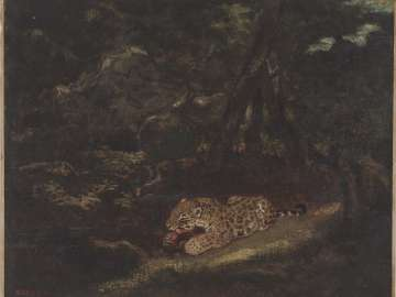 Leopard in its Lair