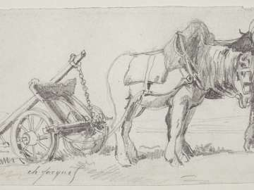 Two horses pulling a plow
