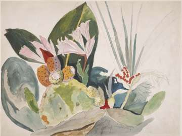 Cactus and Tropical Foliage