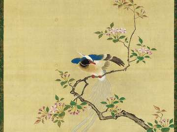 Long-tailed Bird and Peach Tree