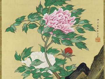Peonies and Birds